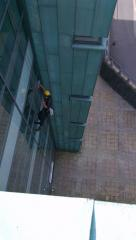 North London Window cleaning